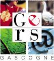 Logo cg gers 1